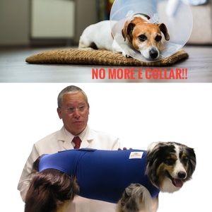 Dog -Surgi snuggly E collar alternative XL long